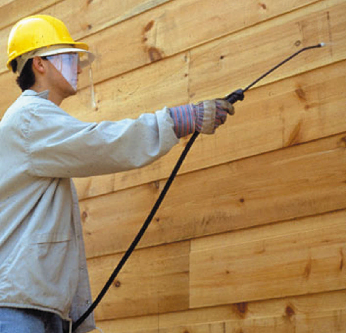 Log Cabin Maintenance Keeping The Bugs Out