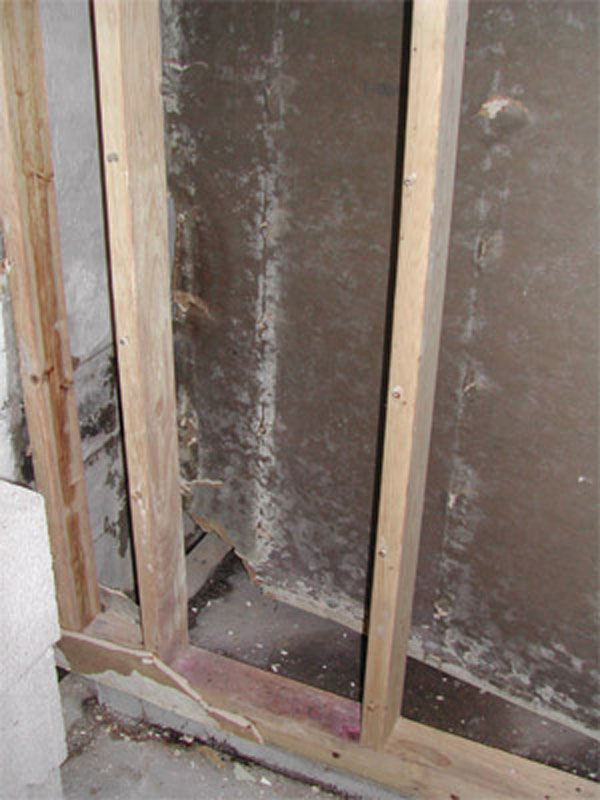 Mold In Bathroom Harmful detecting & preventing mold at the cabin - cabin living