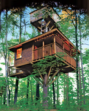 Tree House Magazine .
