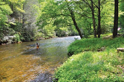 A quiet hideaway Cabin creek 15