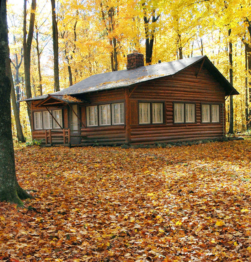 Autumn scene for a small cabin for Small log cabin living