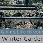 wintergarden_r