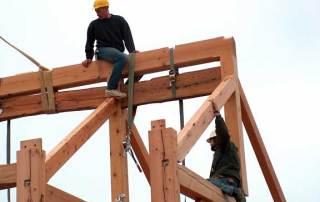 Timber14