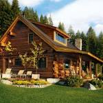 small_log_home1