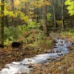 Estemerwalt_Montoursville-Cabin-River-13