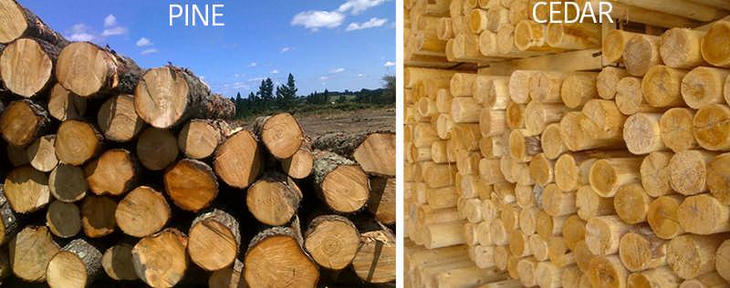 cedar logs or pine logs