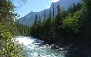 montana-river-bozeman